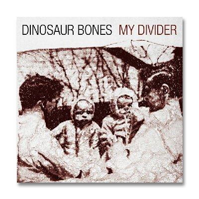 Dinosaur Bones - My Divider | CD