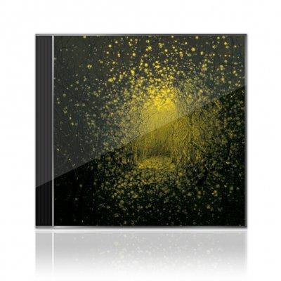 The Antlers - Burst Apart |CD