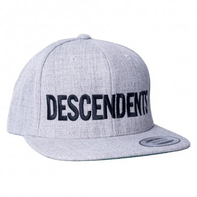 Descendents - Logo Grey | Snapback Cap