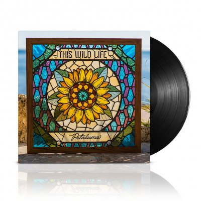 shop - Petaluma | Black Vinyl