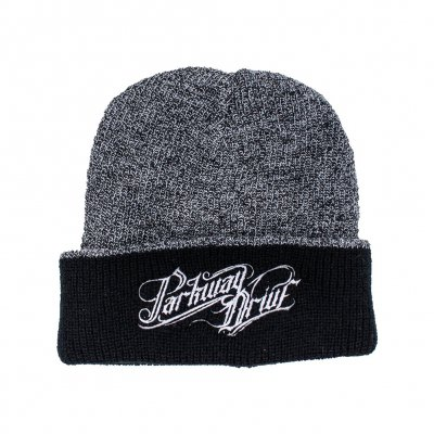 shop - Horizontal Logo | Beanie