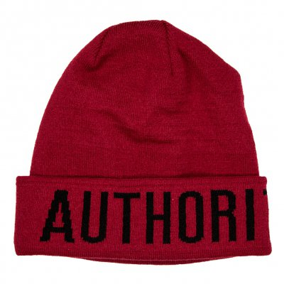 shop - Big Logo | Beanie