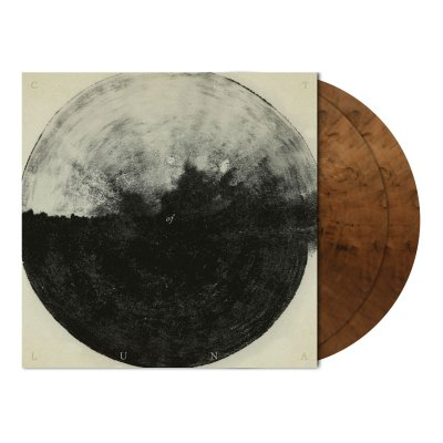 shop - A Dawn To Fear | CVR2-2xClr Brwn Mrbld Vinyl