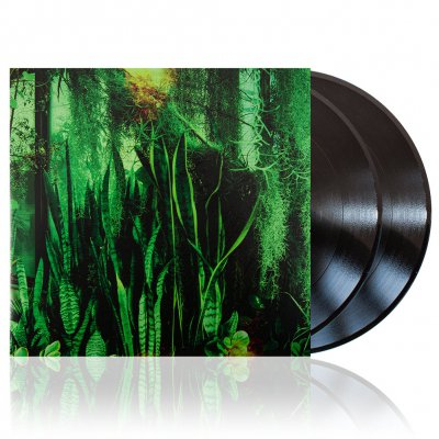 The Promise Ring - Wood/Water | 2xBlack Vinyl