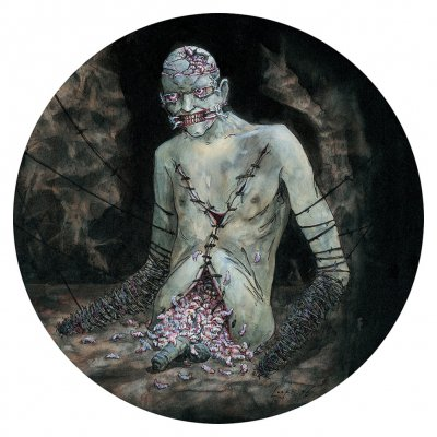 shop - Vile | Picture Vinyl
