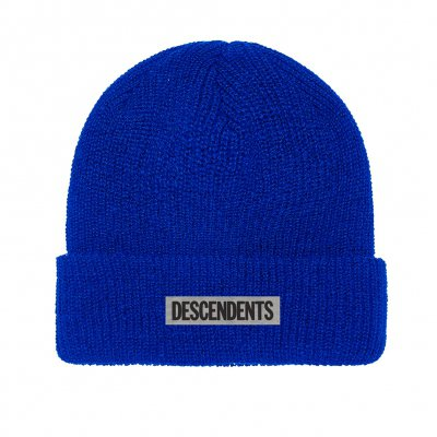 Descendents - Classic Logo | Beanie