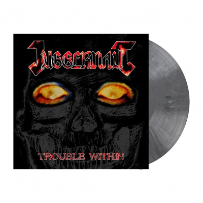 Trouble Within | Opaque Grey Marbled Vinyl