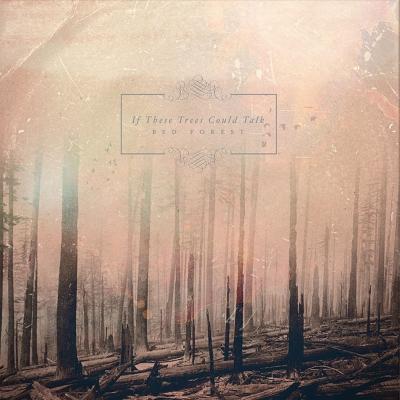 Red Forest | DIGI-CD