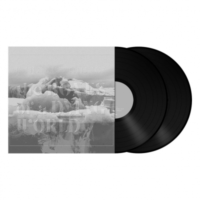 The Bones of a Dying World | 2x180g Black Vinyl