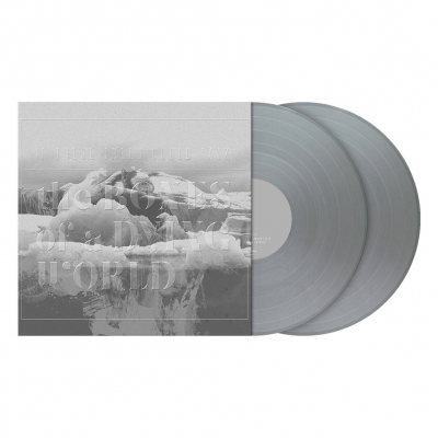 The Bones of a Dying World | 2xSilver Vinyl