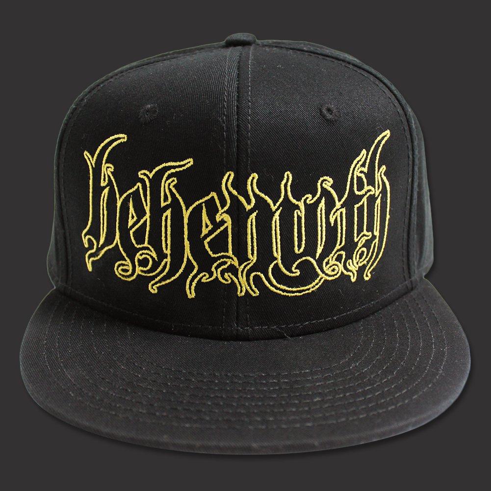 IMAGE | Logo Snap Back Hat (Black)