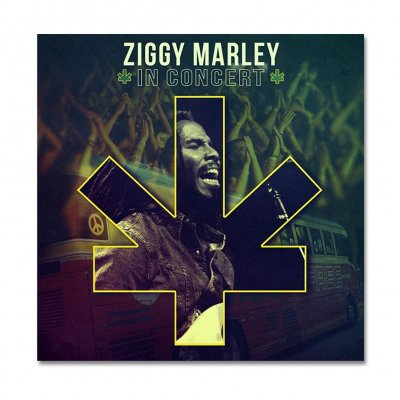 ziggy-marley - Live In Concert CD