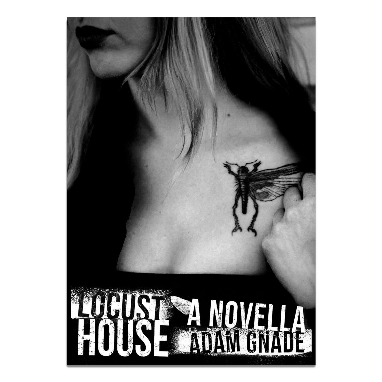 Locust House: A Novella Book