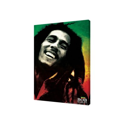 Bob Marley - Paint 24x36 Canvas
