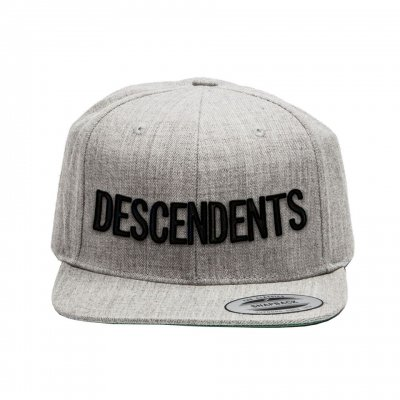 descendents - Logo Snapback (Grey)
