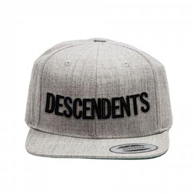 descendents - Classic Logo Snapback (Grey)