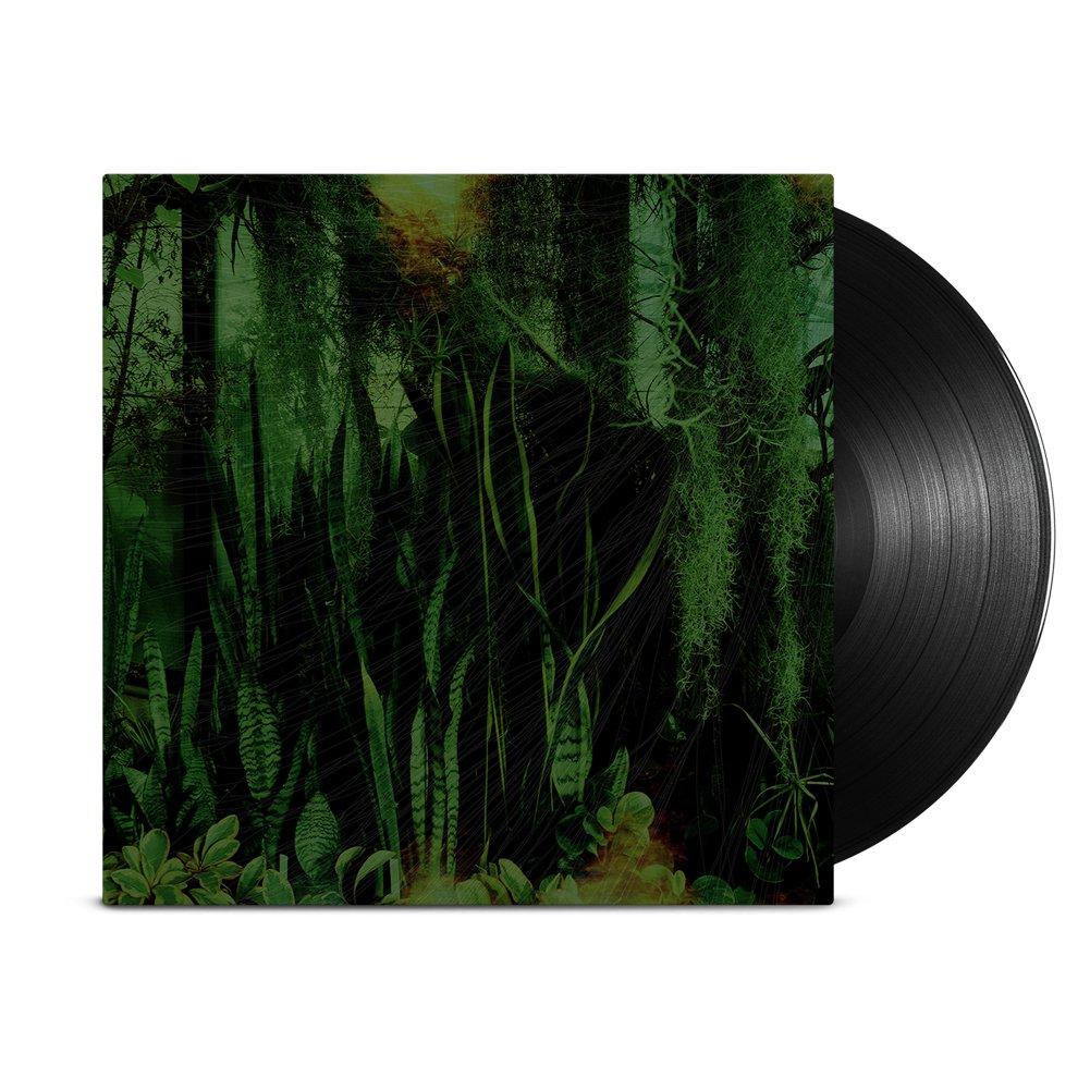 IMAGE   Wood/Water 2xLP (Black)