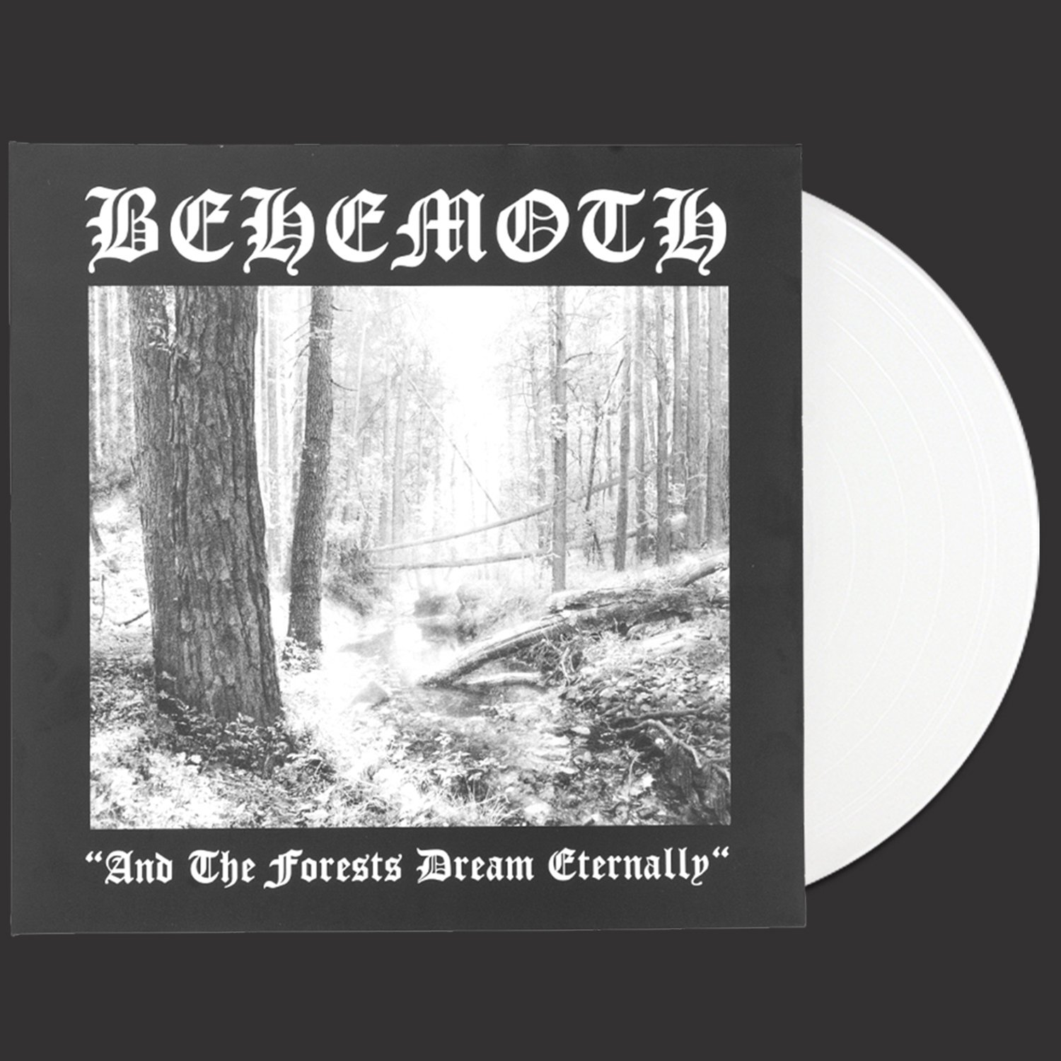 IMAGE   And the Forests Dream Eternally LP (Clear)