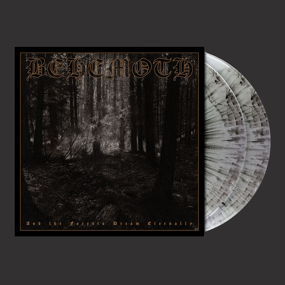 IMAGE | And The Forests Dream Eternally 2xLP (Cool Gray Ma