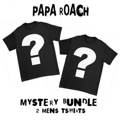 Mystery Bundle (2 Men's Tees)