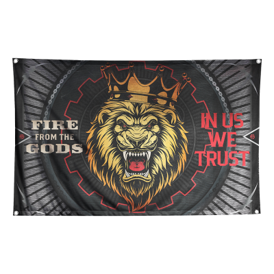 IMAGE | In Us We Trust Wall Flag